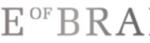 houseofbrandon_alennuskoodi_logo